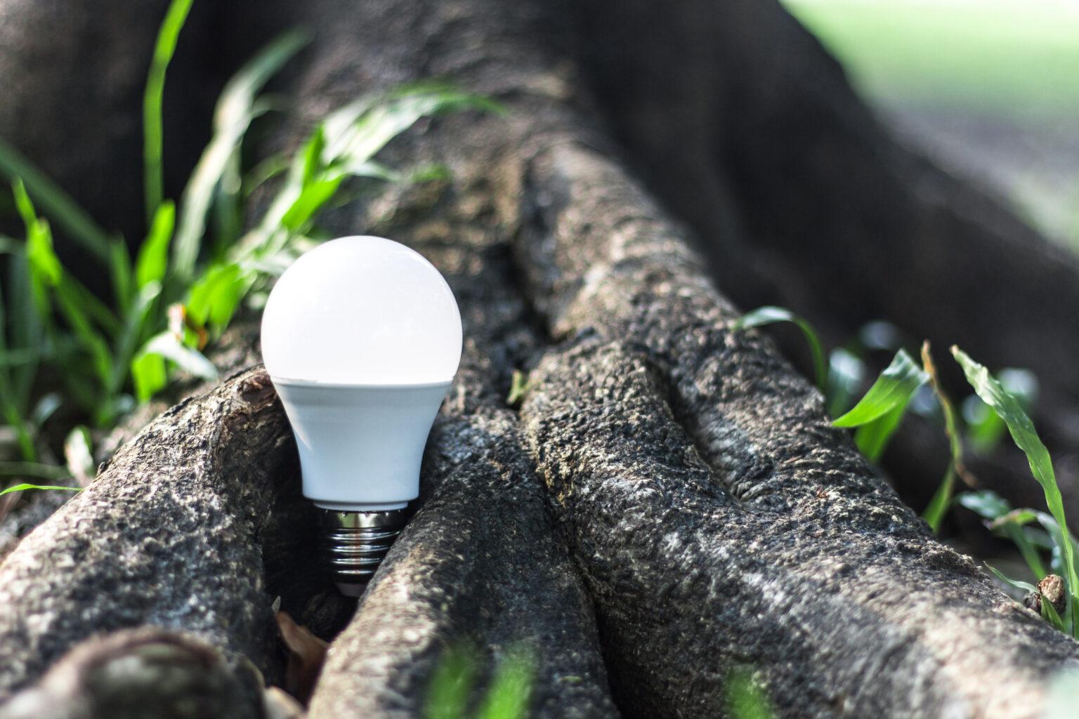 Welke soorten LED tl-lampen zijn er? - Wonen blog